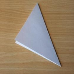 Schritt 1: Origami Schwan falten
