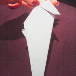 Schritt 20: Papagei aus Papier falten