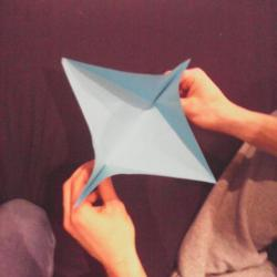 Schritt 8: Papagei aus Papier falten