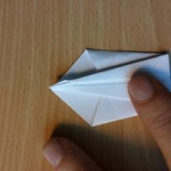 Schritt 6: Origami Schwan falten
